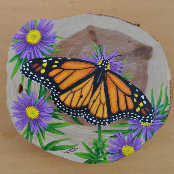monarch 17.jpg