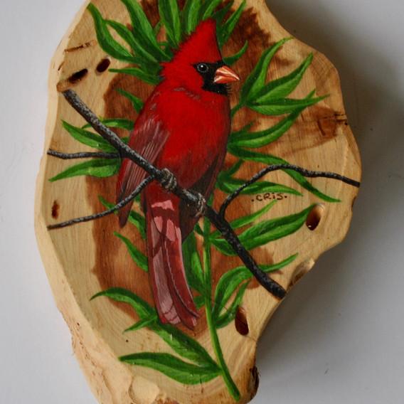 eastern cardinal.jpg