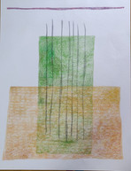 Colour Pencil on Paper