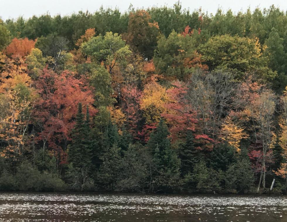 Far Ridge in Autumn Colors
