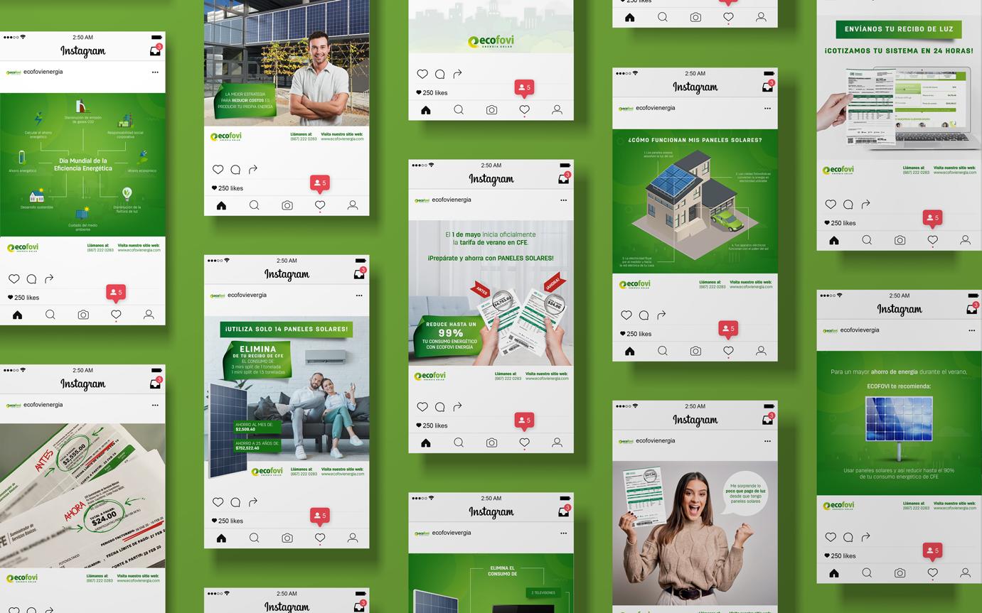 Creación de contenido_Ecofovi