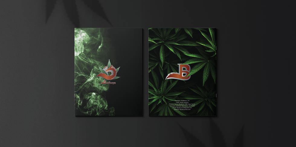 Brochure_Budboys