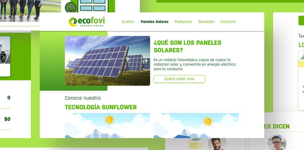 Sitio web_Ecofovi