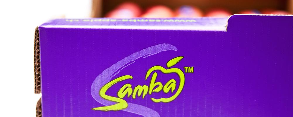 Samba_Kiste_Detail2_Web