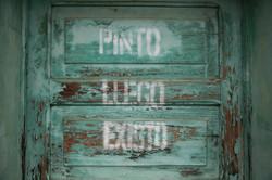 Pinto_luego_8304