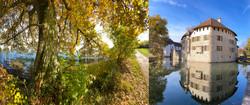 Schloss_Hallwil_8928
