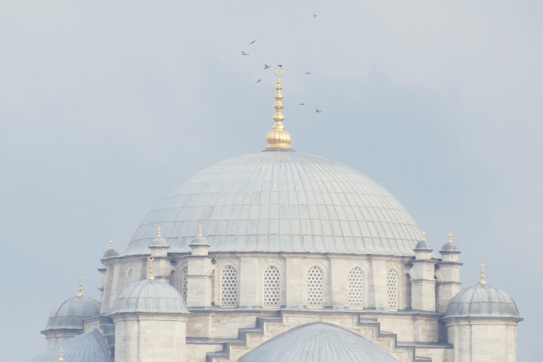 Sehzade_Moschee_top_P1250082