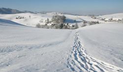 Eriswil_im_Schnee_7370
