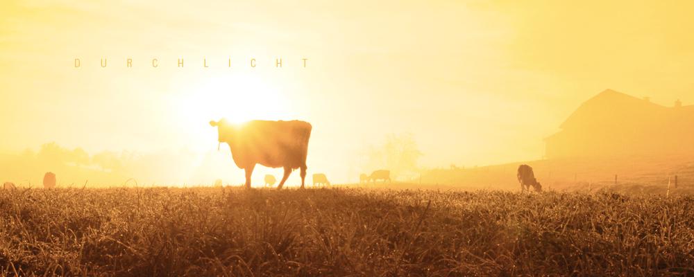 Durchlicht