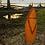 Thumbnail: Peixe