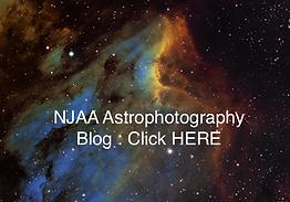 NJAA AP Blog.png