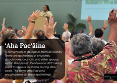 Council to Review 'Aha Pae'āina Format Options
