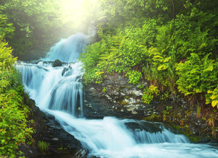 """2020 Pastoral Leaders Retreat: """"Come to the Living Waters"""""""