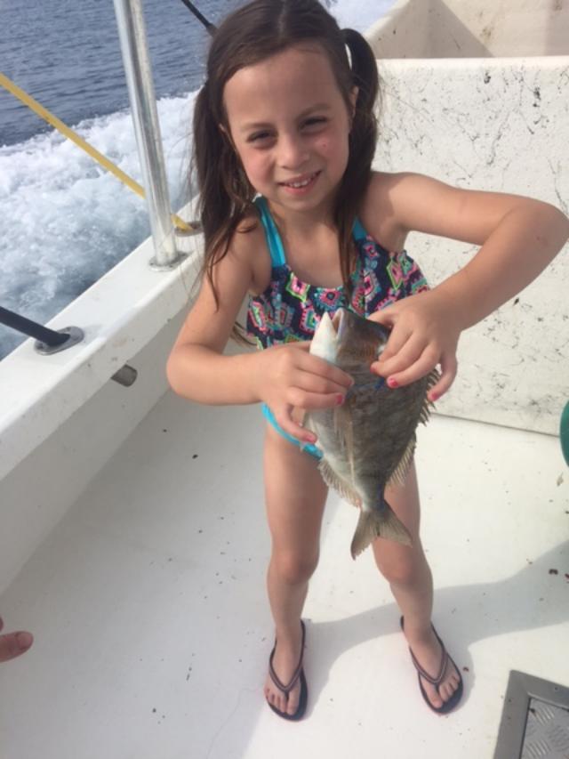 fish14