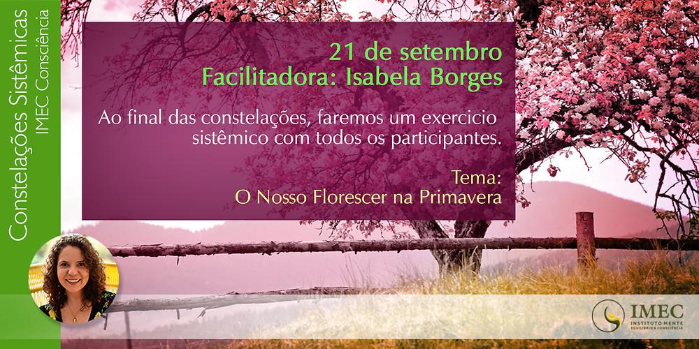 exercício sistêmico primavera imec-consciência Isabela Borges