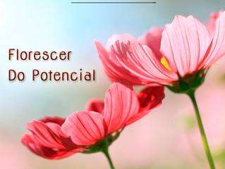 Você vive o seu potencial?