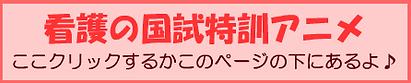 看護バー2国試.png