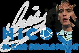 NICO logo image AW.png