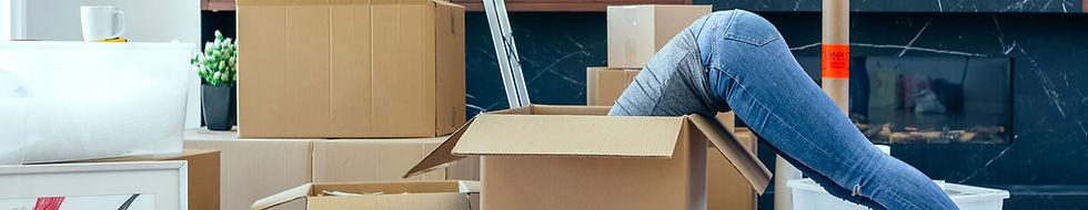 domestic-removals.jpg