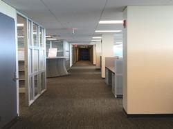 Complete Interior Redesign