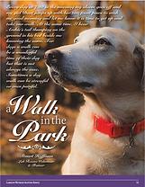 Capture a walk in the Park Dec 2019.PNG