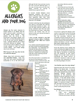 Capture Allergies and your dog dr B june