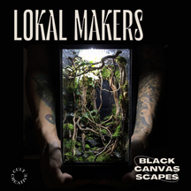 Terrarium Builds For Your Home: Black Canvas Scapes