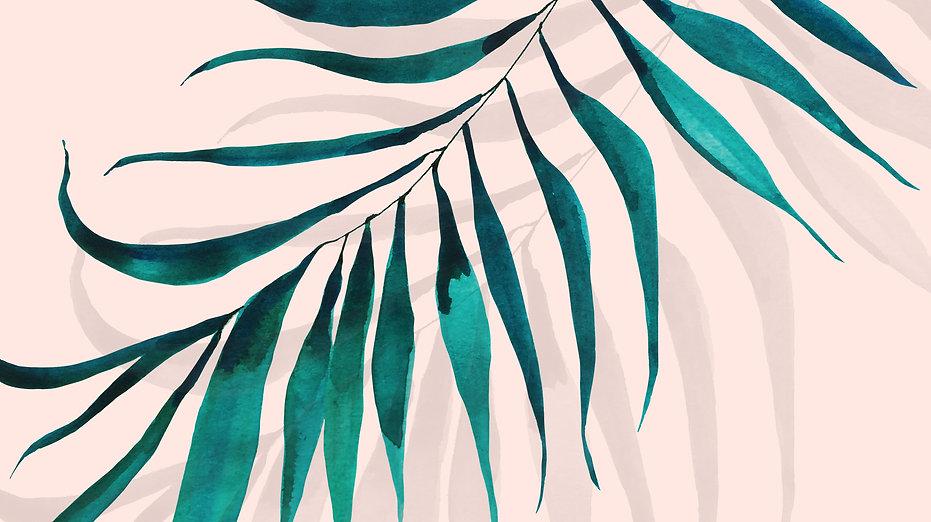 palmi smooth copy.jpg