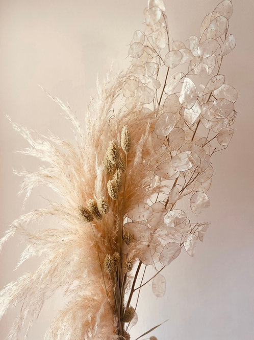 Dried Pampas and Honesty