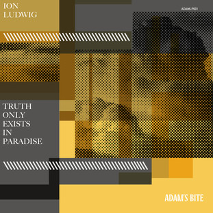 Ion Ludwig - Truth Only Exists in Paradise LP