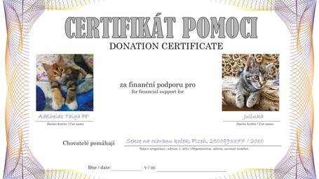 CertifikatTAIGA-Julinka.jpg