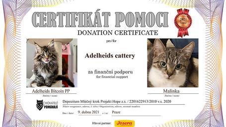 Adelheids-Bitcoin-PP.jpg