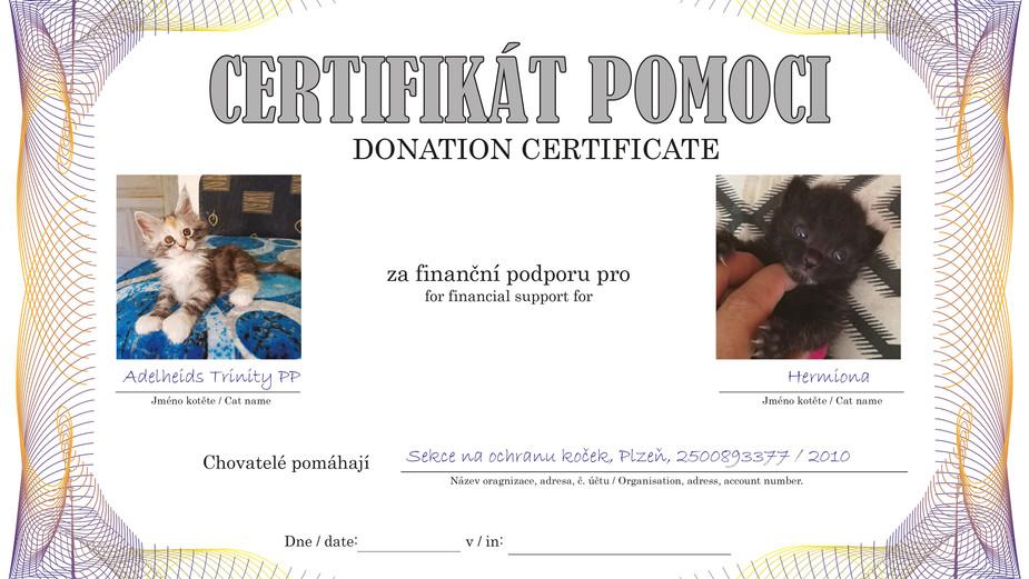 Certifikat-TRINITY-PP-Hermiona.jpg