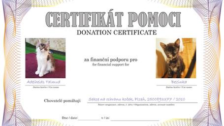 CertifikatTALMUD-Bezinka.jpg