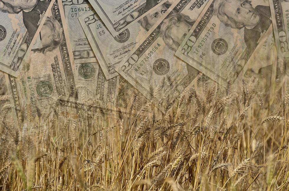 farmincentive.jpg