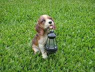 Perro con farol solar
