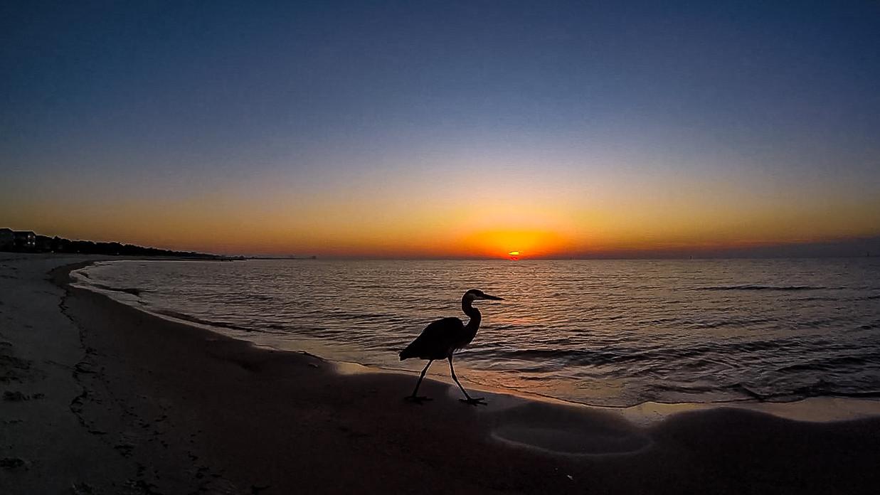 LB Sunrise