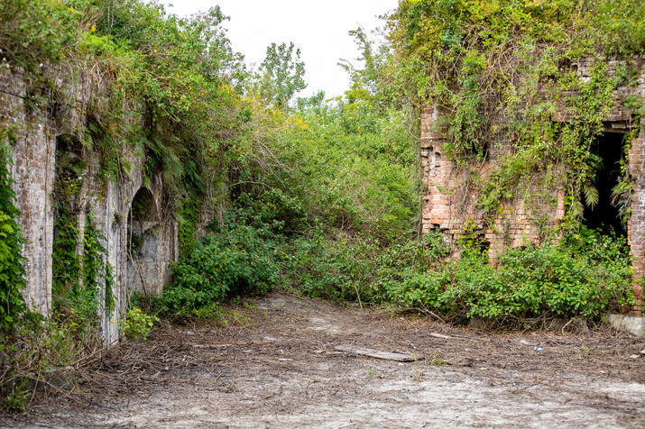 Upon entering the fort, immediately to left is a ramp up to the top of the fort. It's so overgrown, it took 15 minutes to go 15 feet!