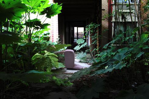 Walkway Between