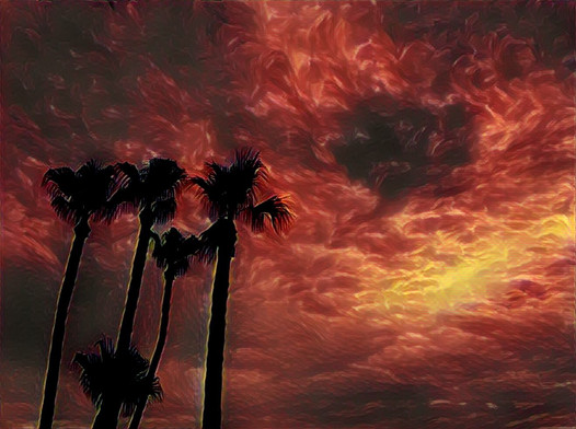 Fire in the Tropical Sky