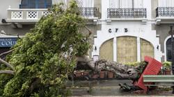 HM Plaza Colon VS