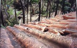 Damaged roof tiles