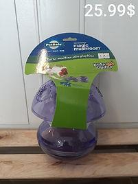 Pet safe magic mushroom.jpg