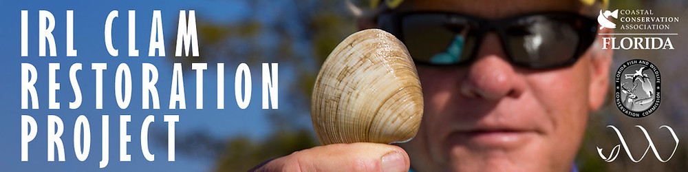 IRL Clam Restoration Project