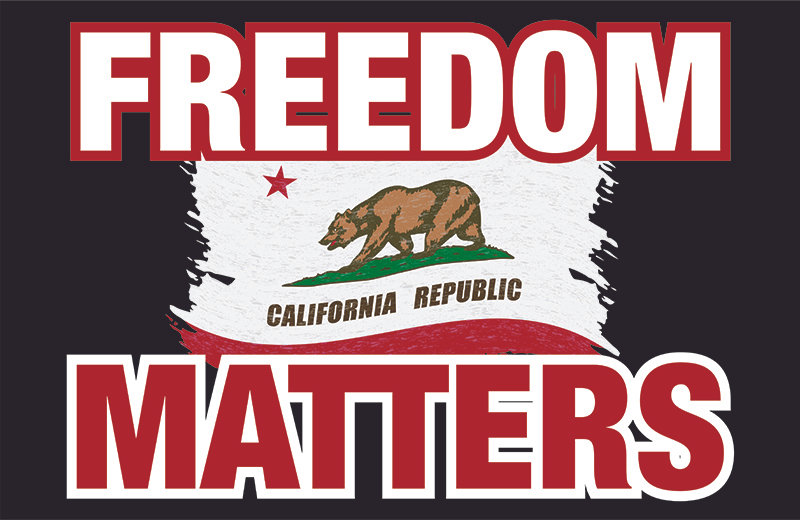Freedom Matters -  Car Magnet 11x17