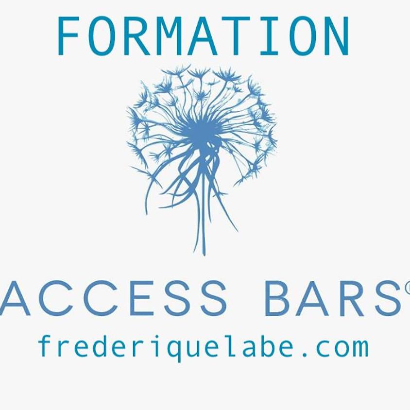 Formation Access BARS® 22 février 2019 Lausanne