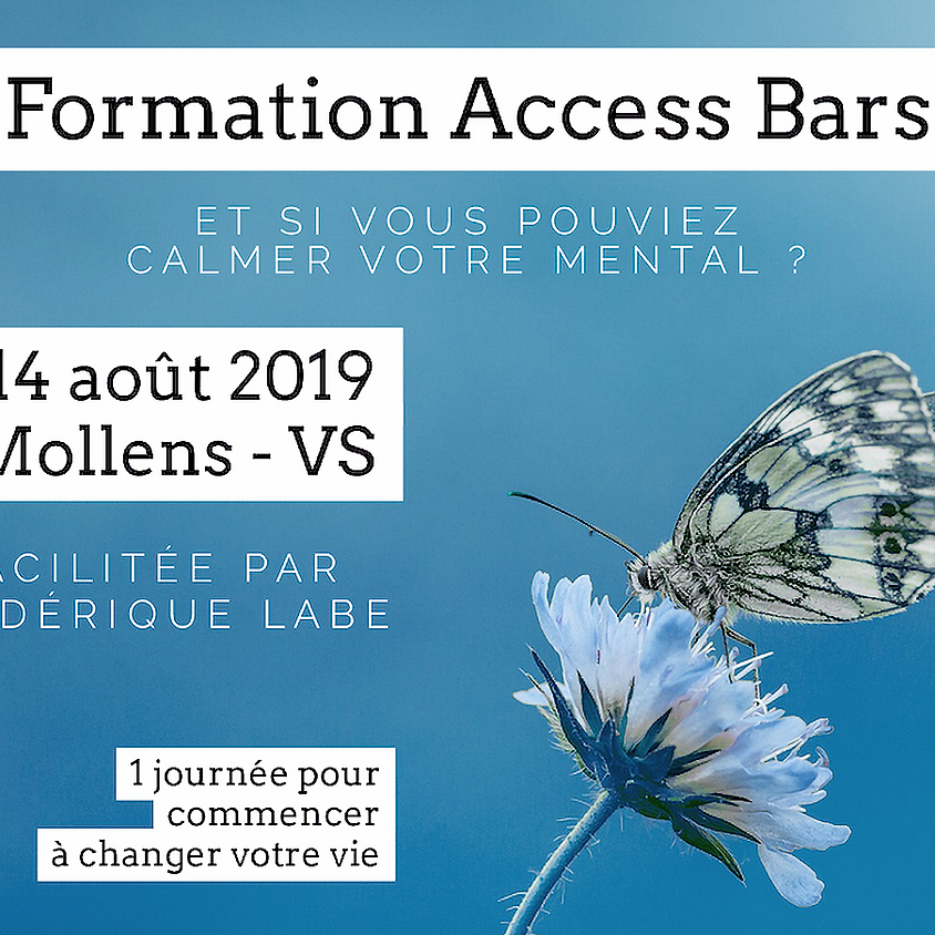 Formation Access BARS® 14 août 2019 à Mollens VS