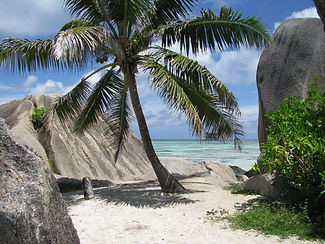 beach-sea-coast-tree-rock-ocean-975276-p