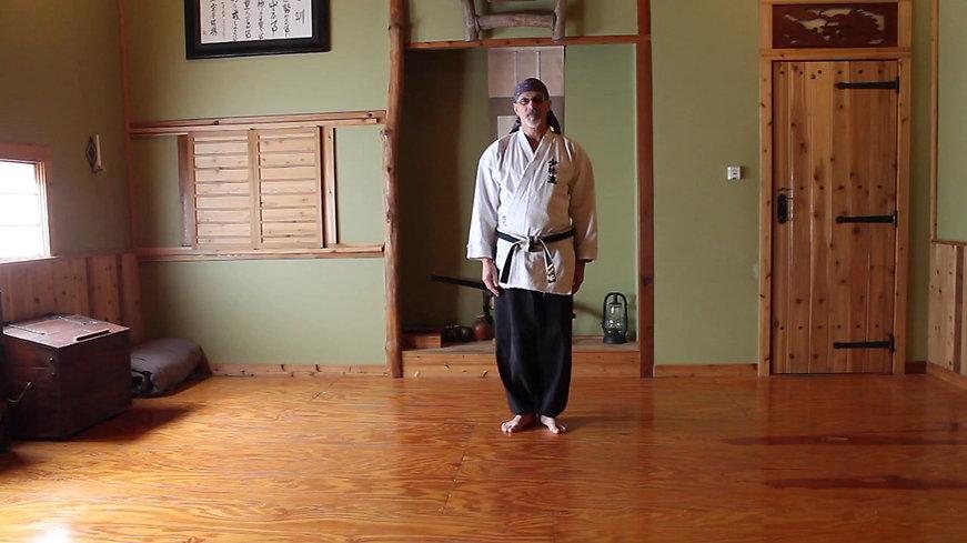 A simple kata of Motobu Udundi Kobujutsu