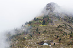 Yellow Aster Butte, Wash.